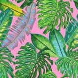 Bloemen Tropisch Naadloos Patroon De Achtergrond van de palmbladenwaterverf voor Behang, Stof, Textiel, Verpakkend Document stock illustratie