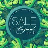 Bloemen tropische exotische achtergrond Ontwerp voor banner, affichemalplaatje de illustratie met doorbladert Leuk malplaatje voo Stock Afbeelding