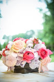 Bloemen van de lente Royalty-vrije Stock Afbeelding
