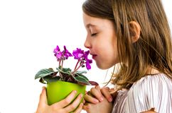 Bloemen van de meisje de ruikende altviool in groene pot stock afbeeldingen