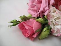 Bloemen van een huwelijksboeket Stock Afbeeldingen
