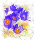 Bloemen van een lumbago Royalty-vrije Stock Afbeelding