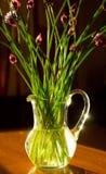 Bloemen van knoflook in vaas op lijst Stock Foto