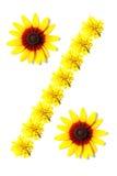 Bloemen van percententeken Royalty-vrije Stock Afbeeldingen
