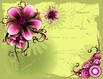 Bloemen vector Royalty-vrije Stock Foto