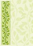 Bloemen vectorachtergrond Royalty-vrije Stock Foto