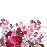 Bloemen vectorachtergrond met lilac bloemen en rozen Stock Fotografie