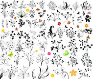 Bloemen vectorelement Royalty-vrije Stock Foto's