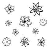 Bloemen, vectorillustratie Stock Afbeelding