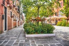 Bloemen Venetiaanse straat - Venetië, Italië royalty-vrije stock foto's