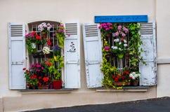Bloemen in venster Stock Afbeeldingen