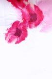 Bloemen verfrommelde stof met rode papavers. Stock Foto