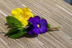 Bloemen versier royalty-vrije stock afbeeldingen