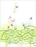 Bloemen vlinderachtergrond Stock Foto