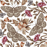 Bloemen. Vlinders. Mooie achtergrond. Royalty-vrije Stock Afbeelding