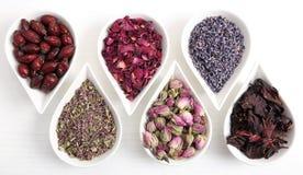 Bloemen voor aromatherapy stock afbeeldingen