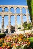 Bloemen voor het aquaduct Stock Afbeelding