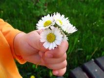 Bloemen voor mum Stock Fotografie