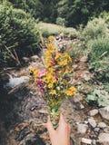 Bloemen voor u Stock Fotografie