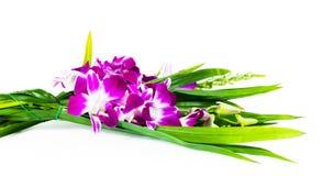 Bloemen voor verering Stock Fotografie