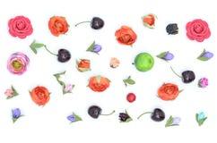 Bloemen, vruchten, samenstelling royalty-vrije stock fotografie