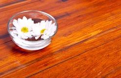 Bloemen in water bij een kuuroord Stock Fotografie