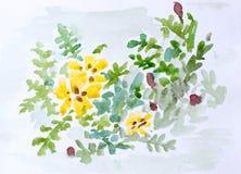 Bloemen, waterverf het schilderen Stock Afbeeldingen