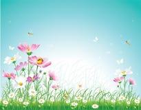 Bloemen weide Stock Foto