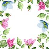 Bloemen wit kader stock illustratie