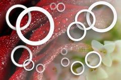 Bloemenabstractie Stereoscopisch fotobehang voor binnenland het 3d teruggeven vector illustratie