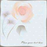 Bloemenachtergrond Stock Foto's