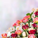 Bloemenachtergrond 21 Stock Afbeeldingen