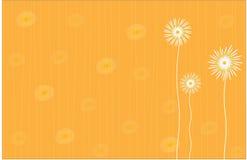 Bloemenachtergrond in heldere geel Stock Foto