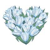 Bloemenachtergrond met bloemen van tulpen Royalty-vrije Stock Afbeelding