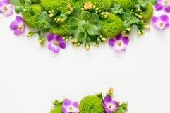 Bloemenachtergrond met een ruimte voor een tekst 2d Vector Stock Fotografie