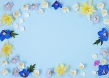 Bloemenachtergrond met lege plaats voor tekst stock afbeeldingen