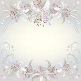 Bloemenachtergrond van de witte bloemen van Lilia Stock Foto