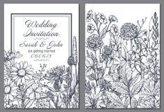 Bloemenachtergronden met hand getrokken kruiden en wildflowers royalty-vrije illustratie