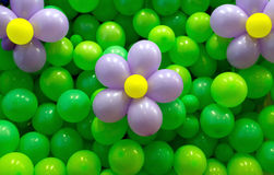 Bloemenballons Royalty-vrije Stock Foto's