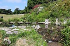 Bloemenbeek, het Eiland Wight stock afbeelding