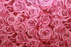 Bloemenbehang als achtergrond op de muur Royalty-vrije Stock Fotografie