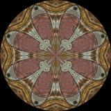 Bloemenbloemblaadjes op schild Royalty-vrije Stock Afbeeldingen