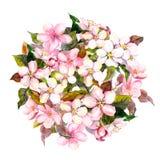 Bloemencirkel, roze bloemen - appel, kers, sakurabloesem watercolor royalty-vrije illustratie