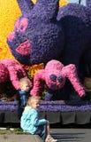 Bloemencorso Bollenstreek один из парадов цветка в Нидерландах и одно самых больших вариантов мира Событие Стоковые Фото