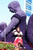 Bloemencorso Bollenstreek один из парадов цветка в Нидерландах и одно самых больших вариантов мира Событие Стоковые Изображения