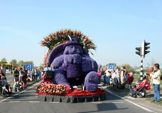 Bloemencorso Bollenstreek is one of the flower parades in the Netherlands and one of the largest editions of the world. The event Stock Photography