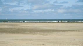 Bloemendaal, Nederlands de kustlijnstrand van Overveen Nederland stock video