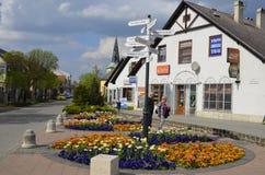 Bloemendecoratie in Gödöllö, Hongarije Royalty-vrije Stock Foto's