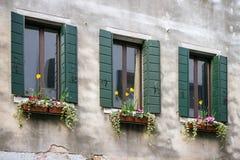 Bloemendecoratie op de oude vensters met blinden Royalty-vrije Stock Fotografie