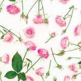 Bloemendiepatroon van roze bloemen op witte achtergrond wordt gemaakt Vlak leg, hoogste mening De textuur van de rozenbloem Royalty-vrije Stock Fotografie